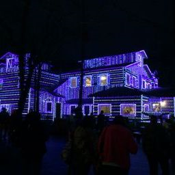 House dollywood